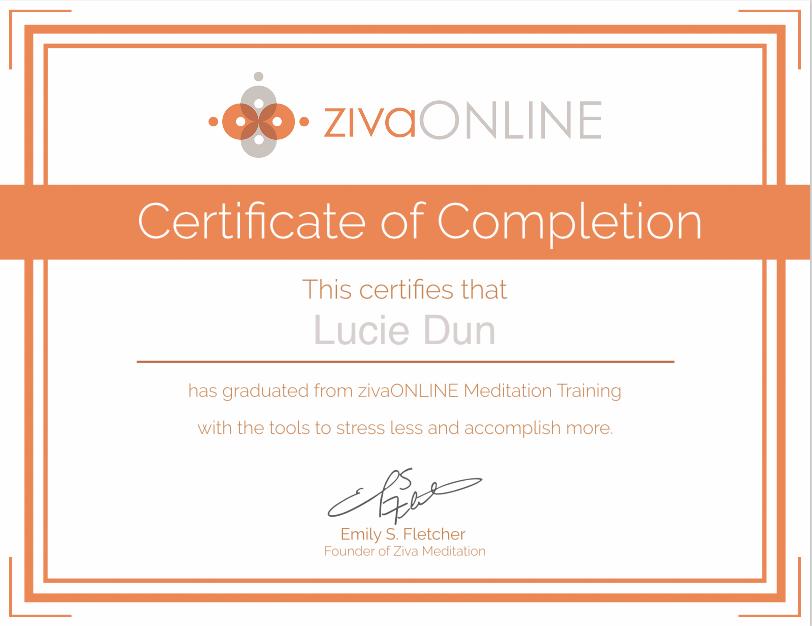 Certificate Ziva Online
