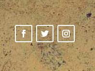 Social Media Follow module