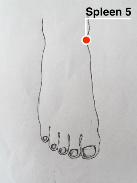 Spleen 5 acupressure point