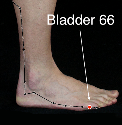 Bladder 66 acupressure point