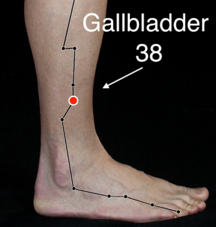 Gallbladder 38 acupressure point