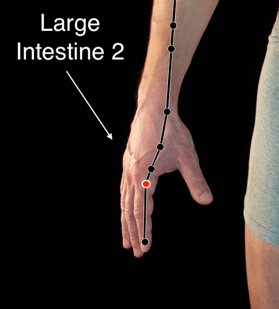 Large Intestine 2 acupressure point