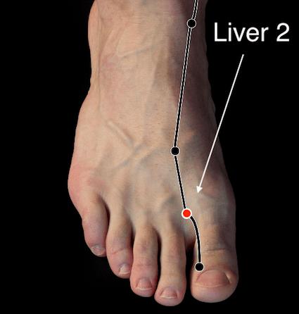 Liver 2 acupressure point