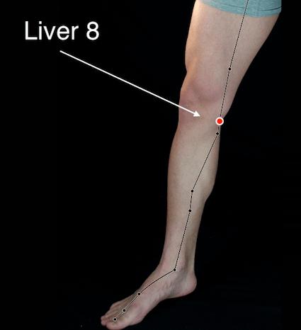 Liver 8 acupressure point