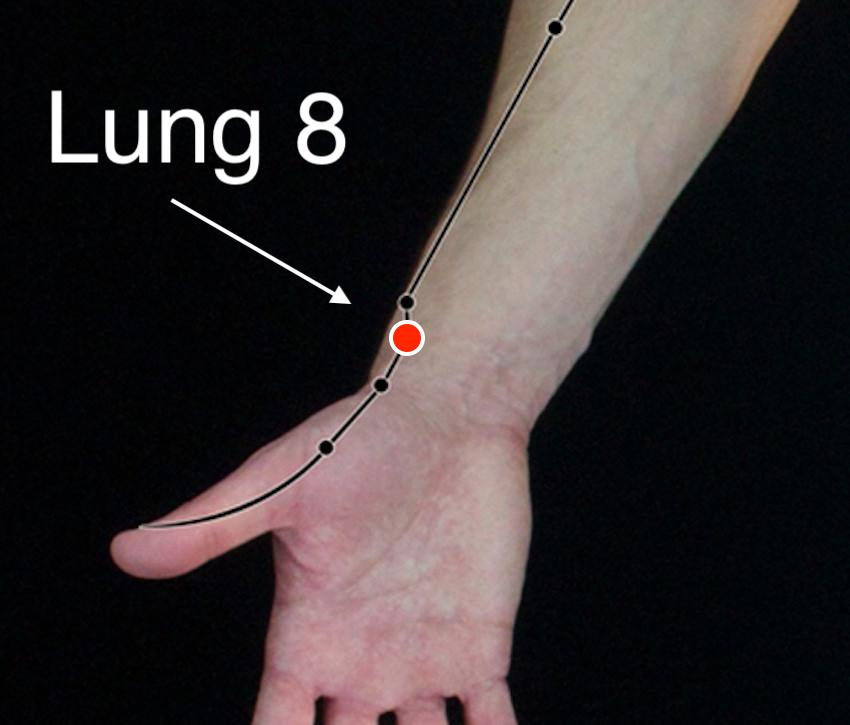 Lung 8 acupressure point