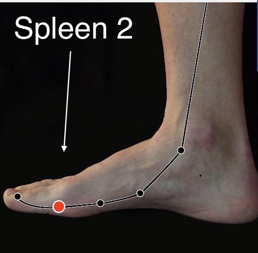 Spleen 2 acupressure point