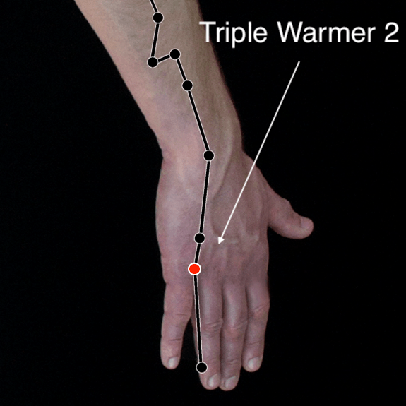 Triple Warmer 2 acupressure point