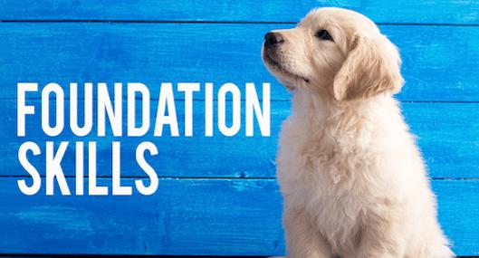Foundation Skills Course