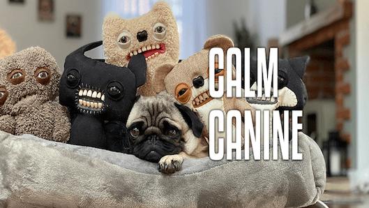 Calm Canine