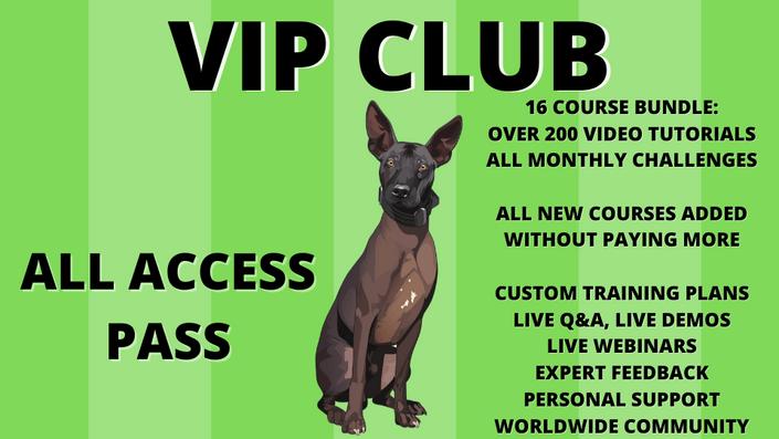 VIP club all-access