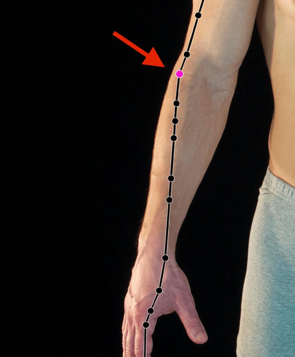 Lareg Intestine 11 acupressure point