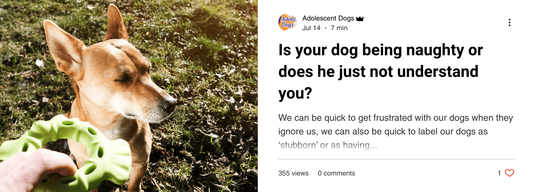 Is Your Dog Being Naughty
