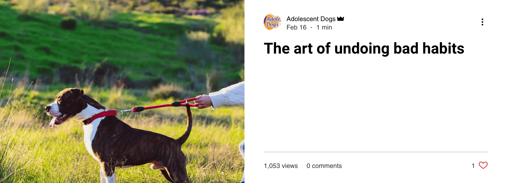 Undoing Bad Habits - blog post by Adolescent Dogs Online Training Academy