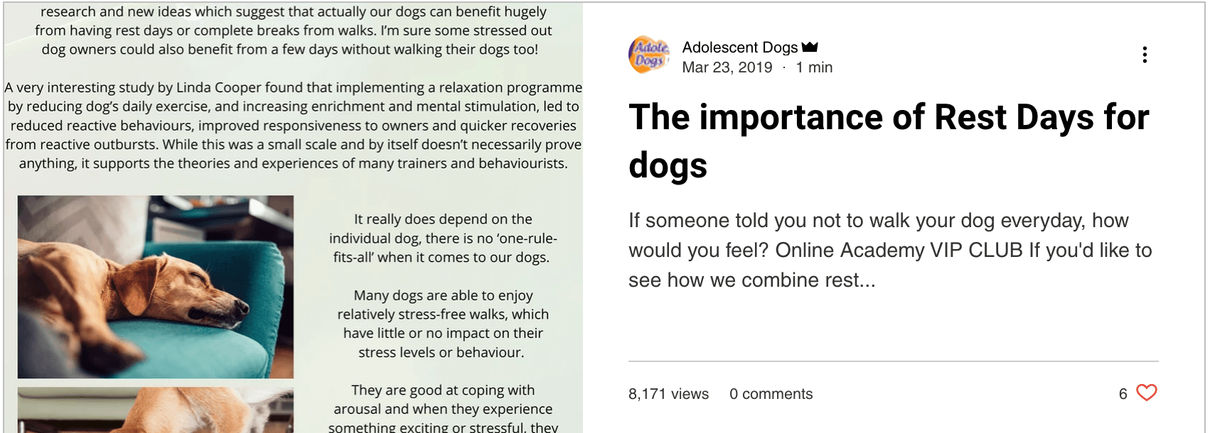 The Importance of Rest Days for Dogs - blog post by Adolescent Dogs Online Training Academy